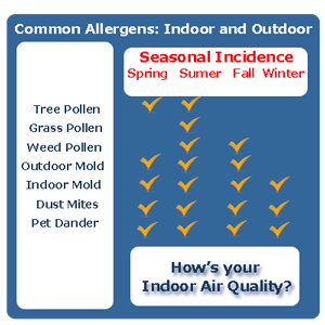 Bornstein Sons can improve your indoor air quality with a filtration system.