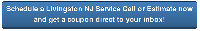 Schedule-Livingston-Services-Get-a-coupon-in-your-inbox