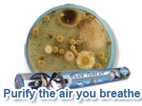 Contact Bornstein Sons about a UV Light to destroy mold in your air conditioning system